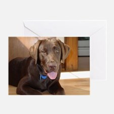 Happy Chocolate Lab Greeting Card