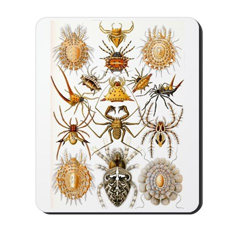 Spiders Mousepad