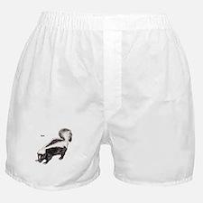 Skunk for Skunk Lovers Boxer Shorts