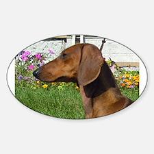 dachshund Decal
