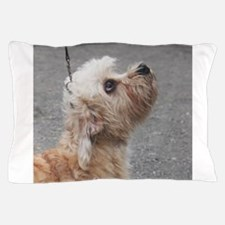 dandie dinmont terrier Pillow Case