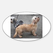dandie dinmont terrier group Decal