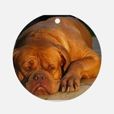 dogue de bordeaux Round Ornament