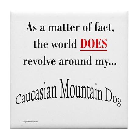 Caucasian World1 Tile Coaster