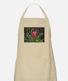 Protea flower with raindrops Apron