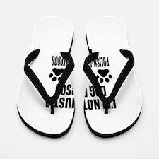 I'm a Polish Lowland Sheepdog Daddy Flip Flops