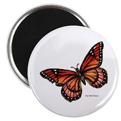 Orange Pink Butterfly Magnet