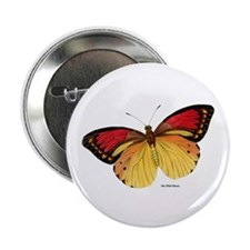 """Red Yellow Butterfly 2.25"""" Button (10 pack)"""