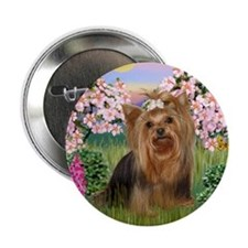 Blossoms & Yorkie 7 Button