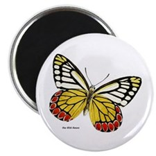 Red Dots Butterfly Magnet