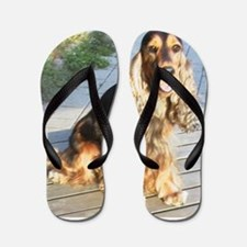 english cocker spaniel Flip Flops