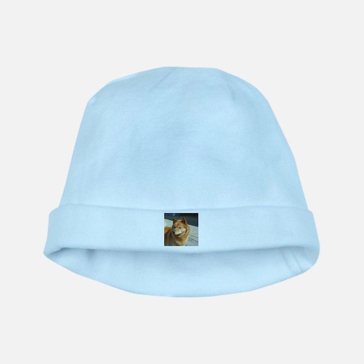 Cute Finnish spitz baby hat