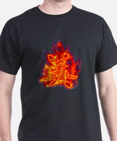 Kanji beauty flaming red T-Shirt