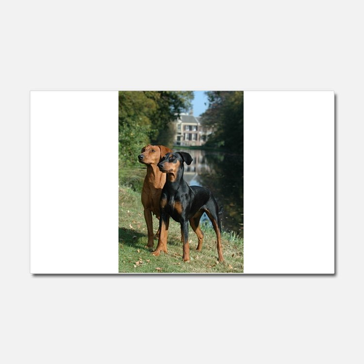 german pinscher group Car Magnet 20 x 12