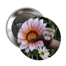 "Baby Fert Flowers 2.25"" Button (10 pack)"