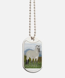 Funny Norwegian fjord horse Dog Tags