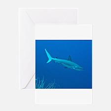 Caribbean Reef Shark Greeting Cards