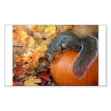 Sticker: squirrel on pumpkin by Pony Browne