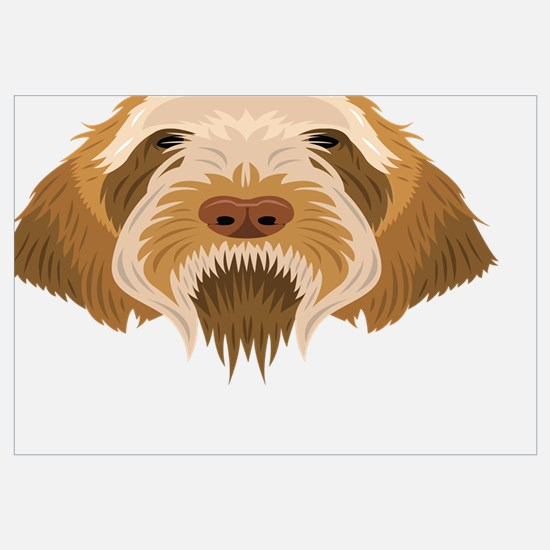 Cute Spinone italiano Wall Art