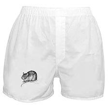 Benny Boxer Shorts