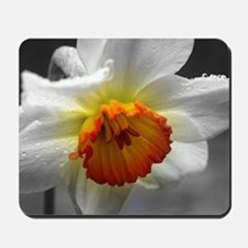 Daffodil Umbrella Mousepad