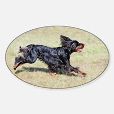 gordon setter in motion Decal