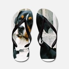 greater swiss mountain dog Flip Flops