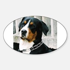 greater swiss mountain dog Decal