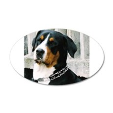 greater swiss mountain dog Wall Decal
