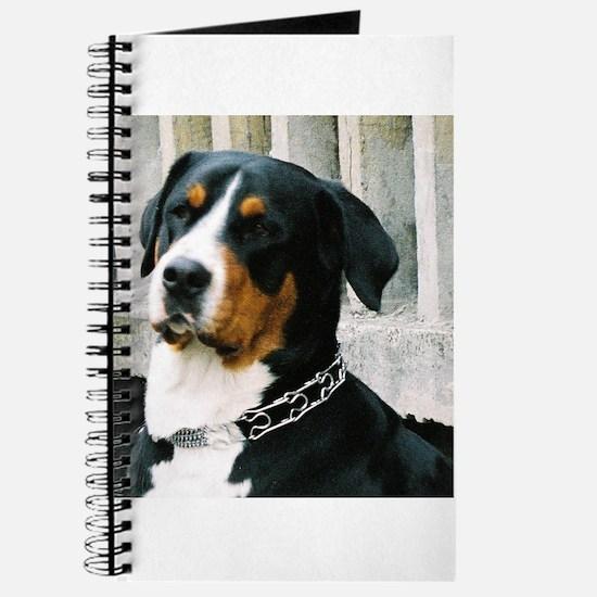 greater swiss mountain dog Journal