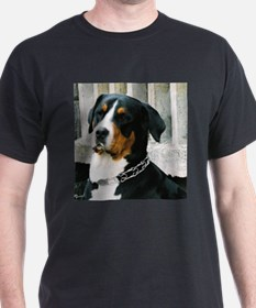 greater swiss mountain dog T-Shirt