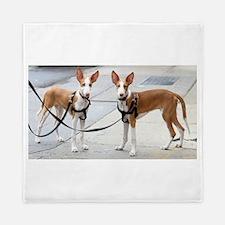 ibizan hound puppy Queen Duvet