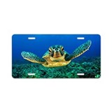 Sea turtle License Plates