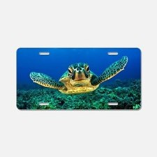 Unique Sea turtle Aluminum License Plate