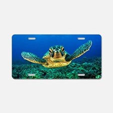 Unique Sea turtles Aluminum License Plate