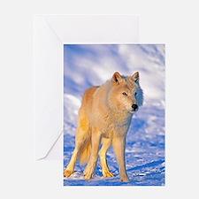 Cute Arctic tundra Greeting Card