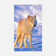 Cute Arctic tundra Decal