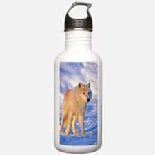 Cute Arctic tundra Water Bottle