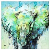 Elephant Wall Posters