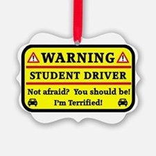 Warning Student Driver Ornament