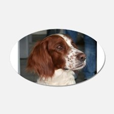 irish red and white setter Wall Decal