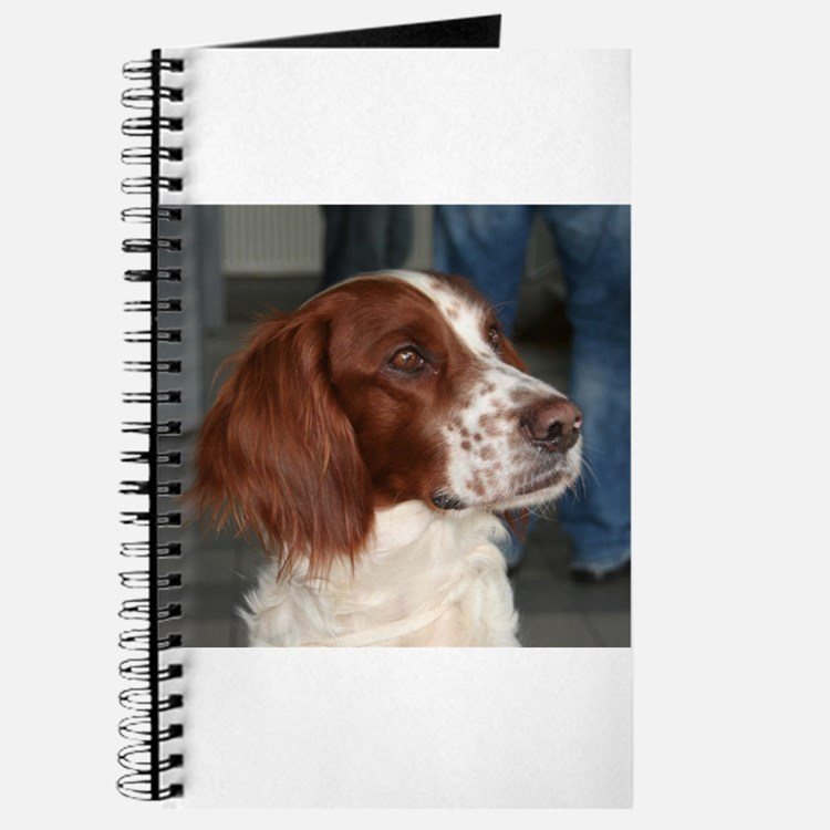 irish red and white setter Journal