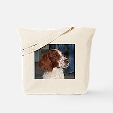 irish red and white setter Tote Bag