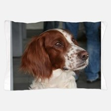 irish red and white setter Pillow Case