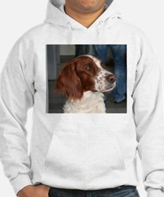 irish red and white setter Hoodie