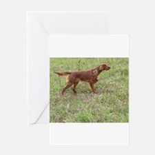 irish setter Greeting Cards