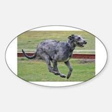irish wolfhound in motion Decal