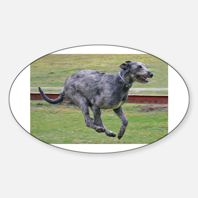 irish wolfhound in motion Decal
