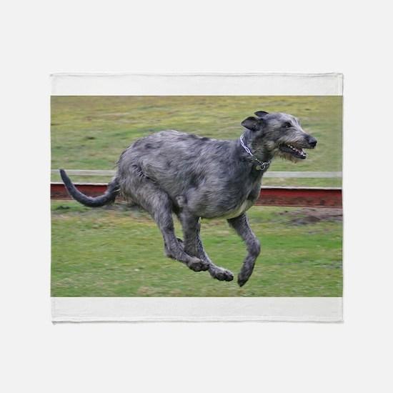 irish wolfhound in motion Throw Blanket