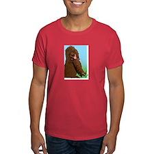 IWS t-shirt